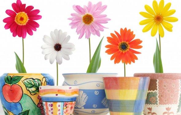Декорирование цветочных